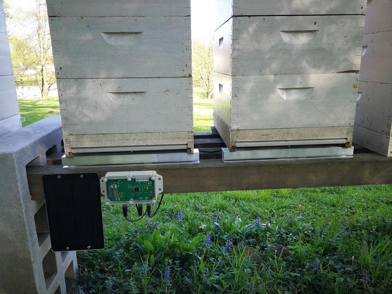 Весы пчеловода
